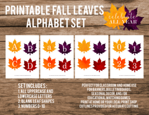 fall leaves alphabet set